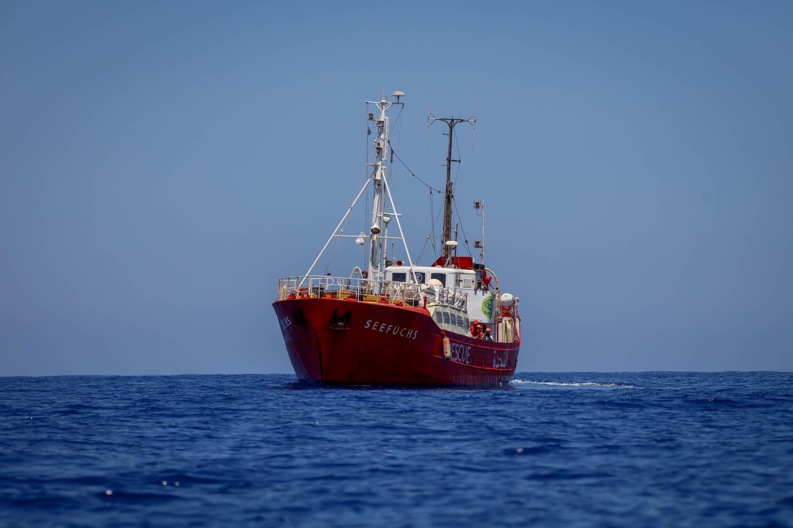 Seefuchs im Mittelmeer