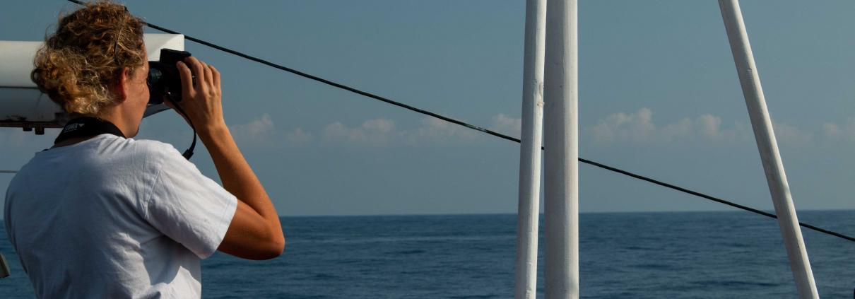 Ausschau halten nach Booten in Seenot
